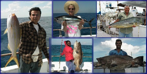 Tasty Catches Include Yellowtail, Snapper, Grouper, Dolphin And More!