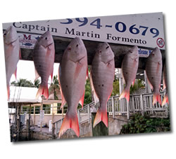 Catch Snapper in the Florida Keys with Beaver Fishing Charters - Key Largo